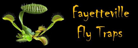 Fayetteville Fly Traps